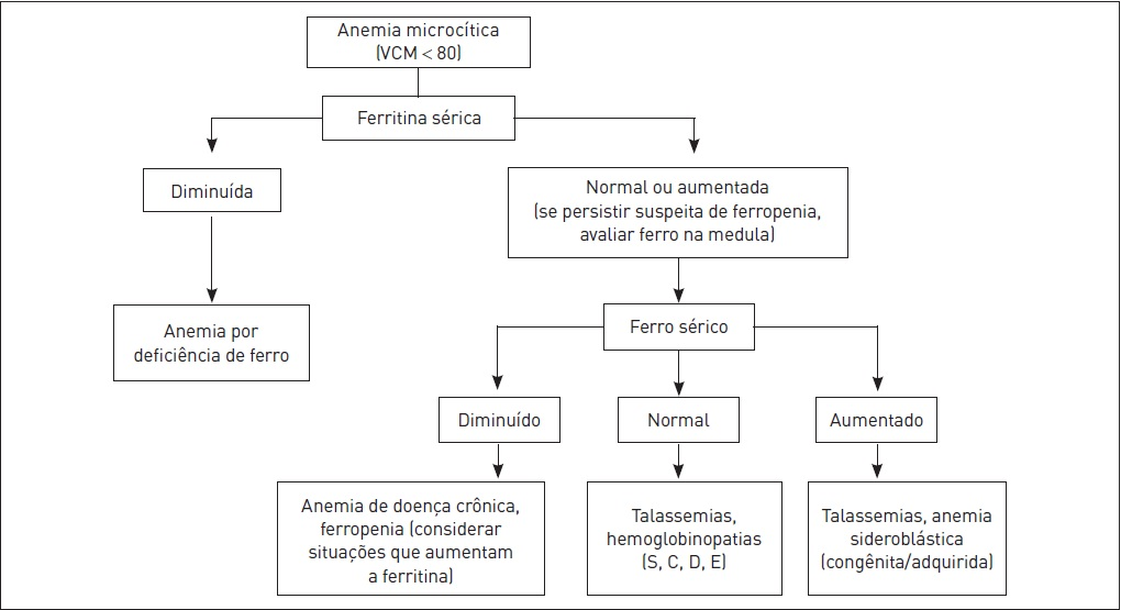 A fisiopatologia do melasma uma abordagem geral e o tratamento com ácido tranexâmico 4