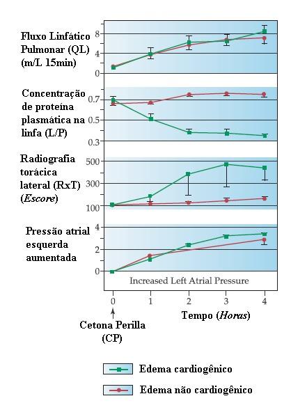 pcap fisiopatología de la diabetes